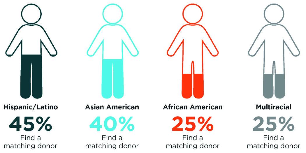 diversity-chart-2019-donor-matching